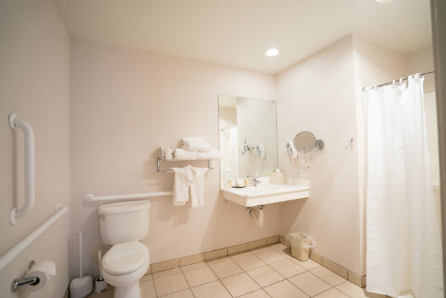 Handicap Accessible Guest Room